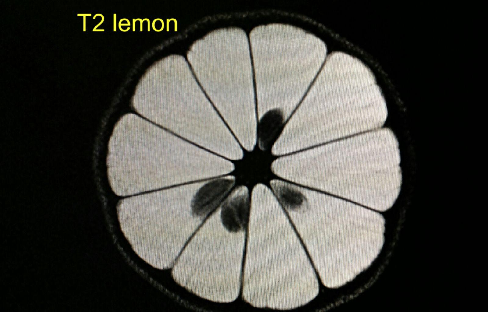 T2 lemon